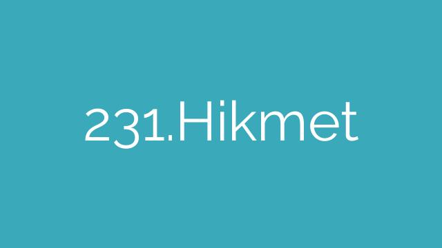 231.Hikmet