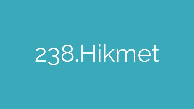 238.Hikmet